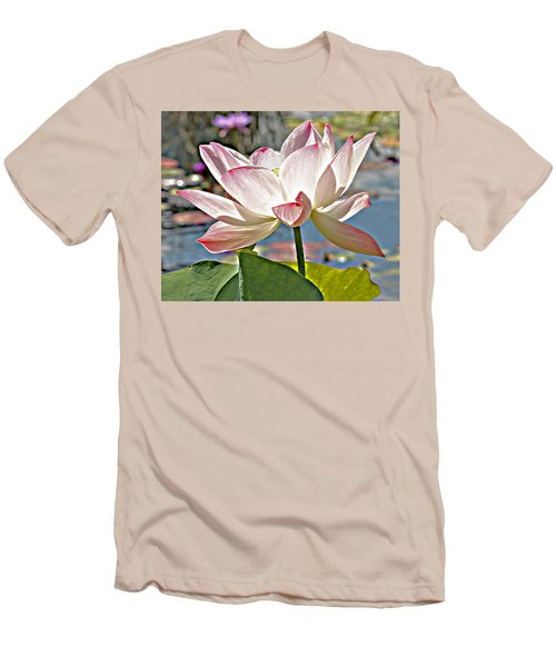 Water Lily Men's T-Shirt (Slim Fit) by Catherine Alfidi