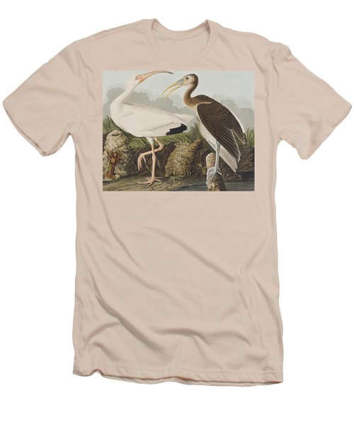 White Ibis Men's T-Shirt (Slim Fit) by John James Audubon