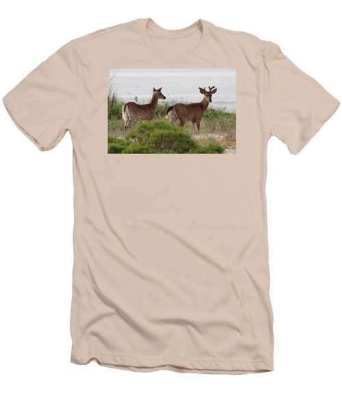 White Tail Deer Port Jefferson New York Men's T-Shirt (Athletic Fit)
