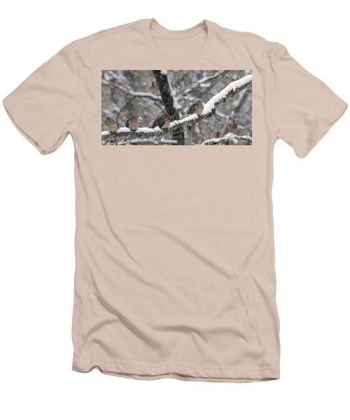 Winter Doves Men's T-Shirt (Slim Fit) by Diane Giurco