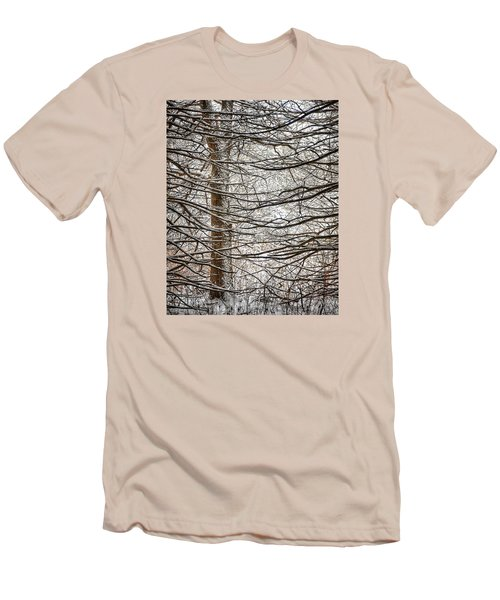 Winter In The Woods Men's T-Shirt (Slim Fit) by Nikki McInnes
