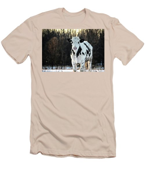 Wisconsin Dairy Cow Men's T-Shirt (Athletic Fit)