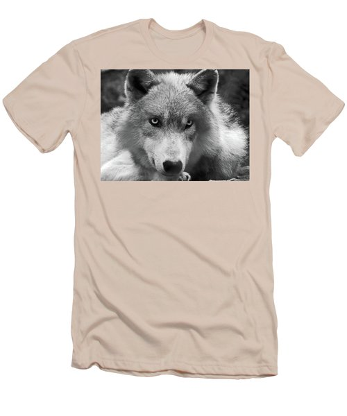 Wolf 1 Men's T-Shirt (Athletic Fit)