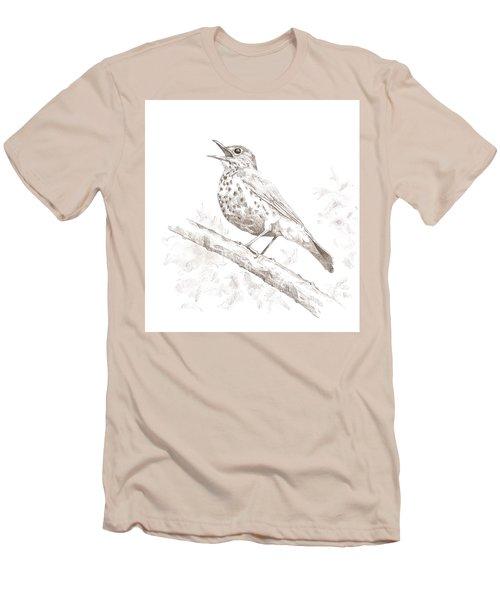 Wood Thrush Men's T-Shirt (Athletic Fit)
