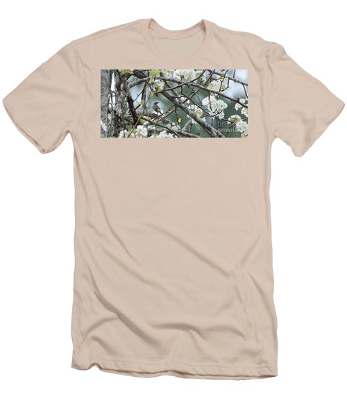 Yellow-rumped Warbler In Pear Tree Men's T-Shirt (Athletic Fit)