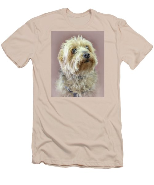Yorkshire Terrier Men's T-Shirt (Slim Fit) by Marion Johnson