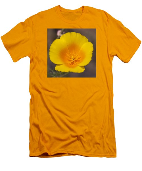 California Sunshine Men's T-Shirt (Athletic Fit)
