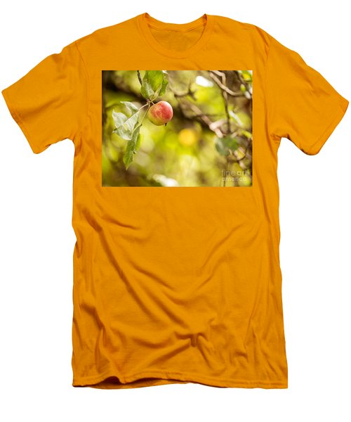 Autumn Apple Men's T-Shirt (Athletic Fit)