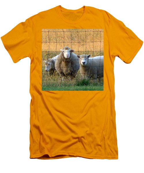 Men's T-Shirt (Slim Fit) featuring the photograph Baaaaa by Joseph Skompski