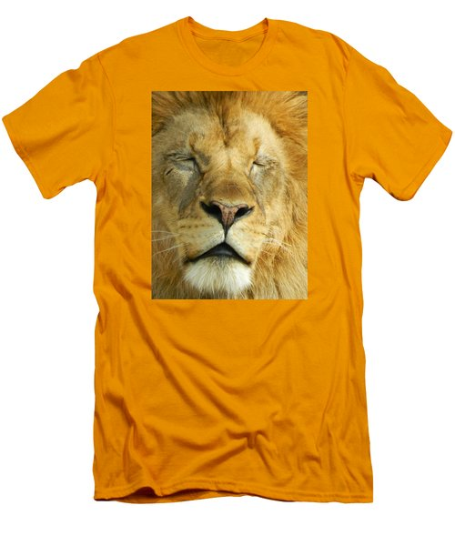 Cat Nap Men's T-Shirt (Slim Fit) by Emmy Marie Vickers