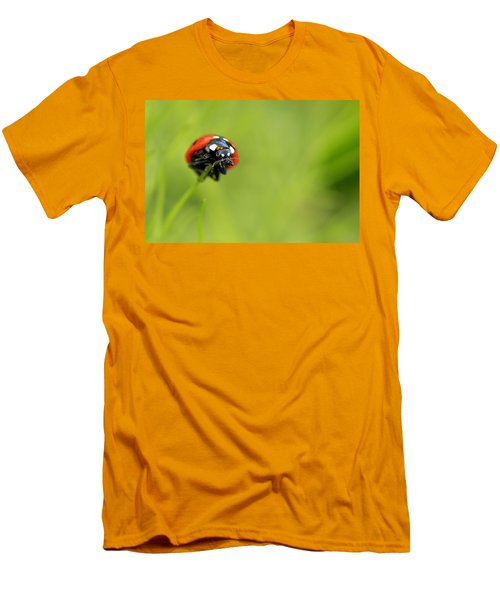 Coccinellidae  Men's T-Shirt (Athletic Fit)