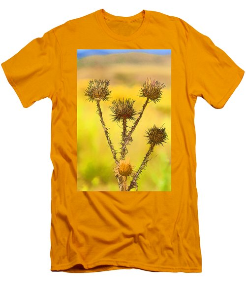 Dry Brown Thistle Men's T-Shirt (Athletic Fit)