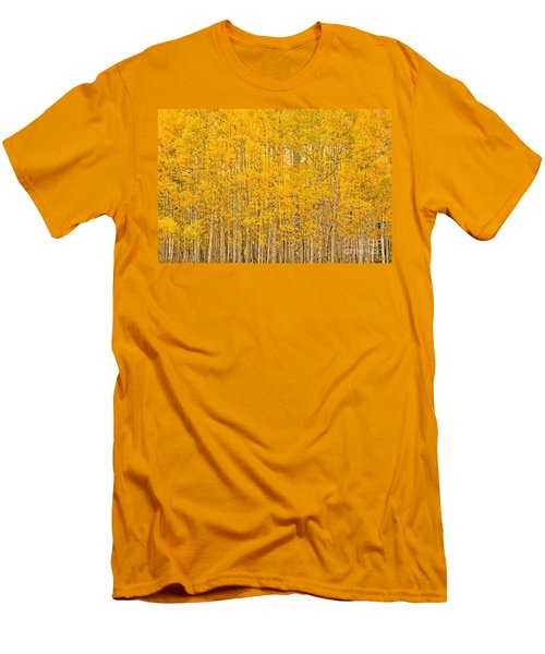 Fullness Of Gold Men's T-Shirt (Athletic Fit)