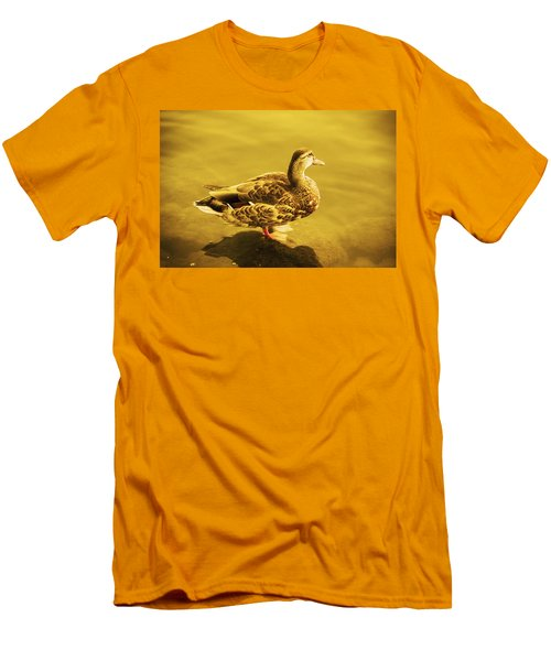 Men's T-Shirt (Slim Fit) featuring the photograph Golden Duck by Nicola Nobile