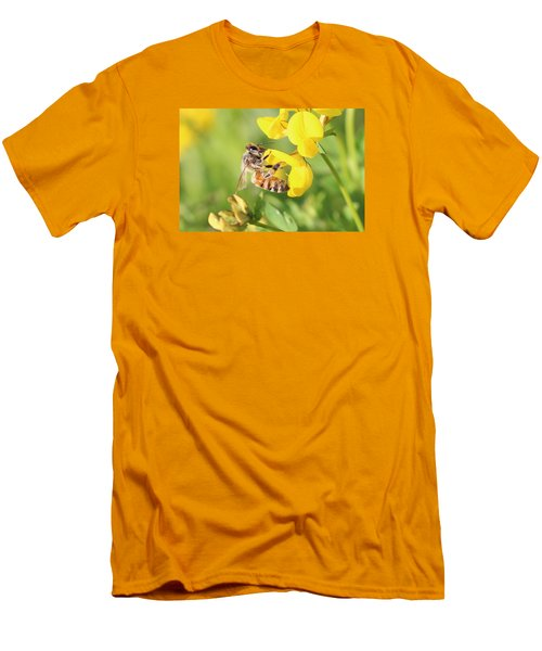 honeybee on Birdsfool Trefoil Men's T-Shirt (Athletic Fit)