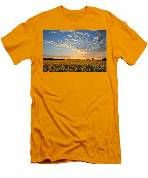 Kansas Sunflowers At Sunset Men's T-Shirt (Slim Fit) by Catherine Sherman