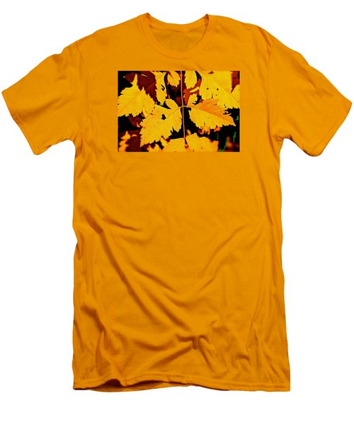 Nature's Designworks Men's T-Shirt (Slim Fit) by Ira Shander