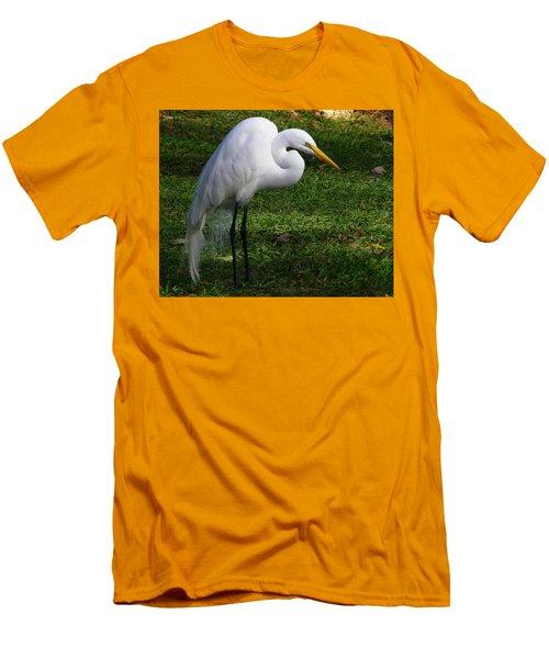 Posing Prettily Men's T-Shirt (Athletic Fit)