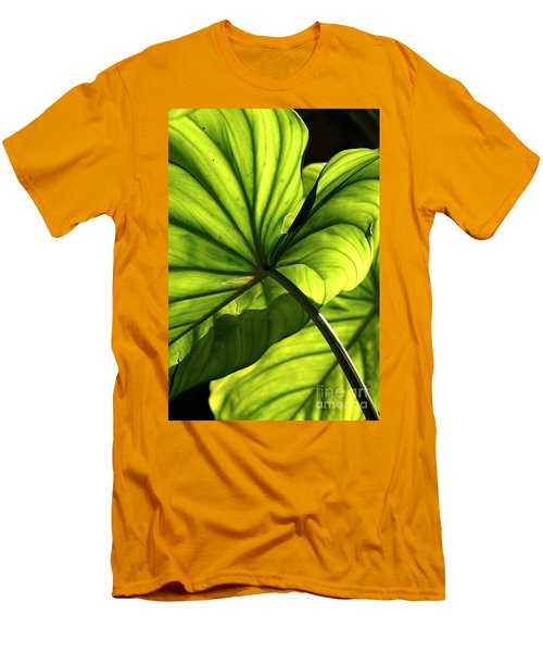 Shapes Of Hawaii 12 Men's T-Shirt (Athletic Fit)