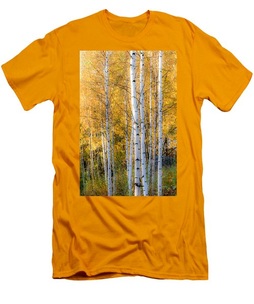 Thin Birches Men's T-Shirt (Athletic Fit)