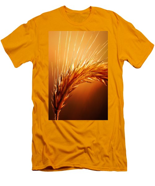 Wheat Close-up Men's T-Shirt (Slim Fit) by Johan Swanepoel