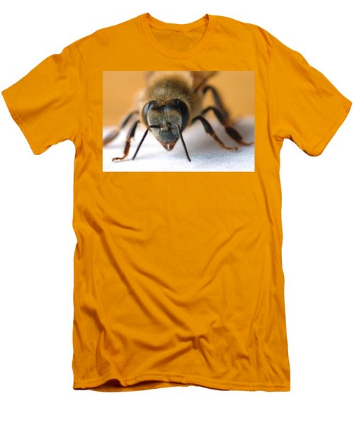 Bee In Macro 4 Men's T-Shirt (Slim Fit) by Micah May