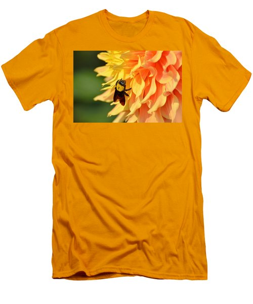 Bumblebee Men's T-Shirt (Slim Fit) by Fotosas Photography