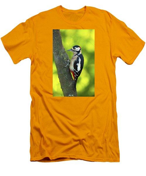 Great Spotted Woodpecker Men's T-Shirt (Slim Fit) by Paul Scoullar