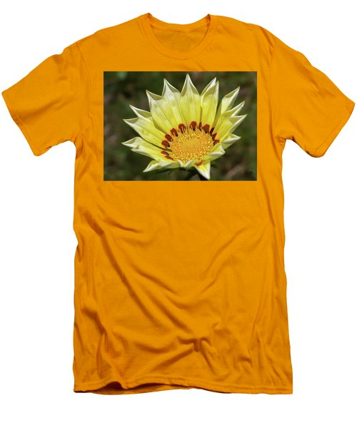 Gazania Petals Men's T-Shirt (Athletic Fit)