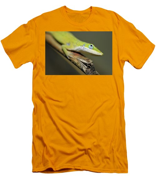 Anole Men's T-Shirt (Athletic Fit)