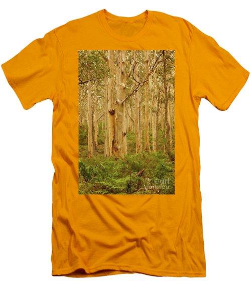 Boranup Forest II Men's T-Shirt (Athletic Fit)