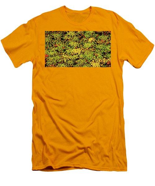 A Botanical Mosaic Men's T-Shirt (Athletic Fit)