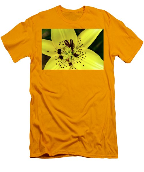 Asiatic Lily Men's T-Shirt (Slim Fit) by Jay Stockhaus