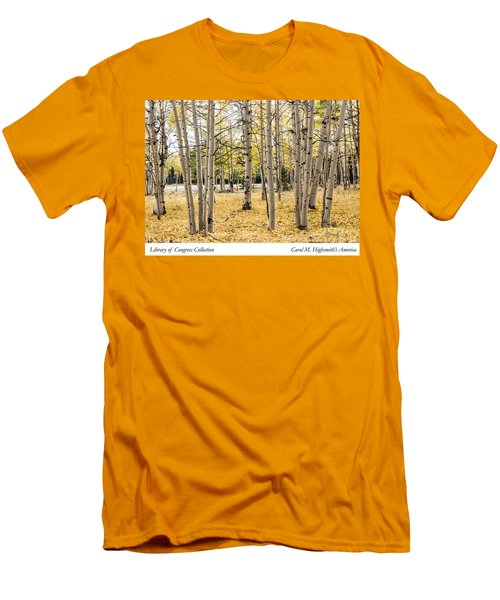 Men's T-Shirt (Slim Fit) featuring the photograph Aspens In Conejos County In Colorado, Near The New Mexico Border by Carol M Highsmith