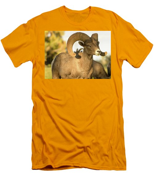 Bighorn Ram Men's T-Shirt (Slim Fit) by Scott Warner