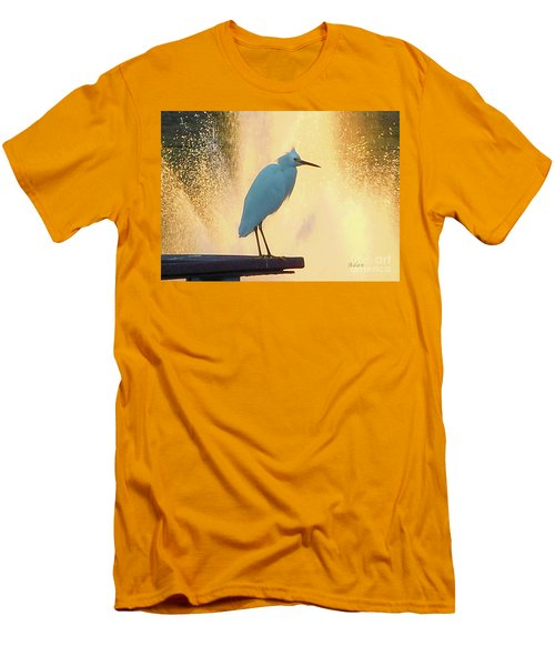 Birds And Fun At Butler Park Austin - Birds 3 Detail Macro Men's T-Shirt (Athletic Fit)