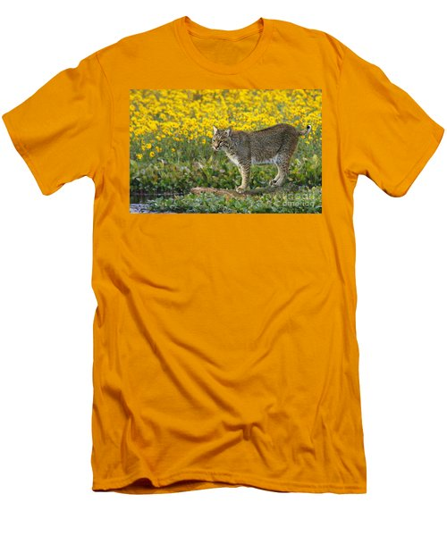 Bobcat In The Swamp Men's T-Shirt (Slim Fit) by Myrna Bradshaw