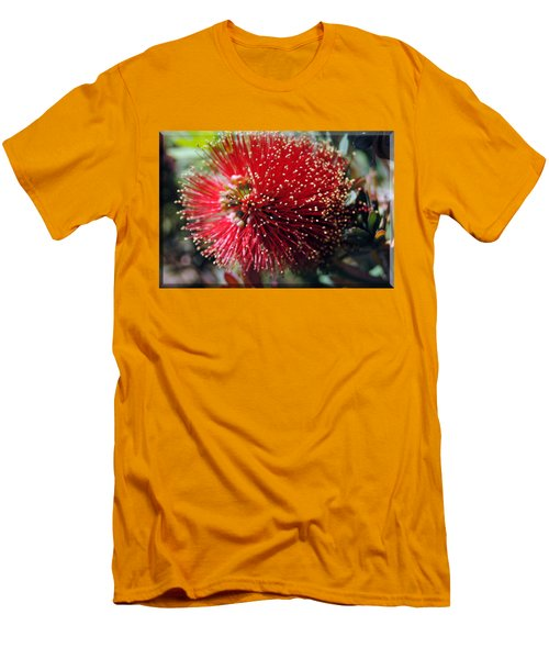 Callistemon - Bottle Brush T-shirt 5 Men's T-Shirt (Slim Fit) by Isam Awad