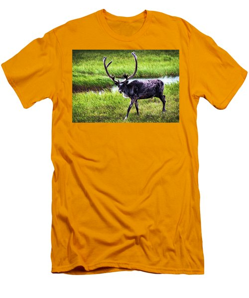 Men's T-Shirt (Slim Fit) featuring the photograph Caribou by Anthony Jones