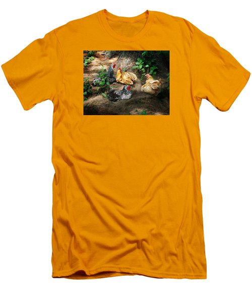 Chicken Dust Bath Party Men's T-Shirt (Athletic Fit)