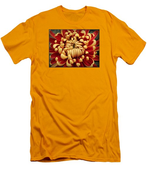 Chrysanthemum In Full Bloom Men's T-Shirt (Slim Fit)