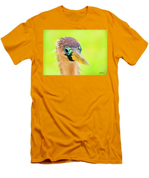 Colorful Female Anhinga Men's T-Shirt (Athletic Fit)