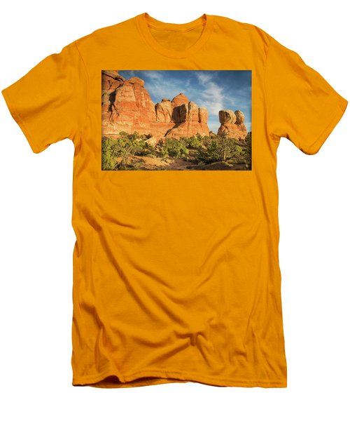 Colors Of Chesler Park Men's T-Shirt (Athletic Fit)