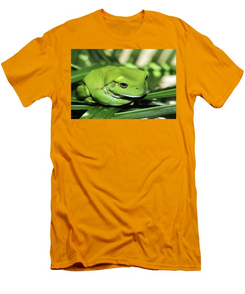 Cool Green Frog 001 Men's T-Shirt (Slim Fit) by Kevin Chippindall