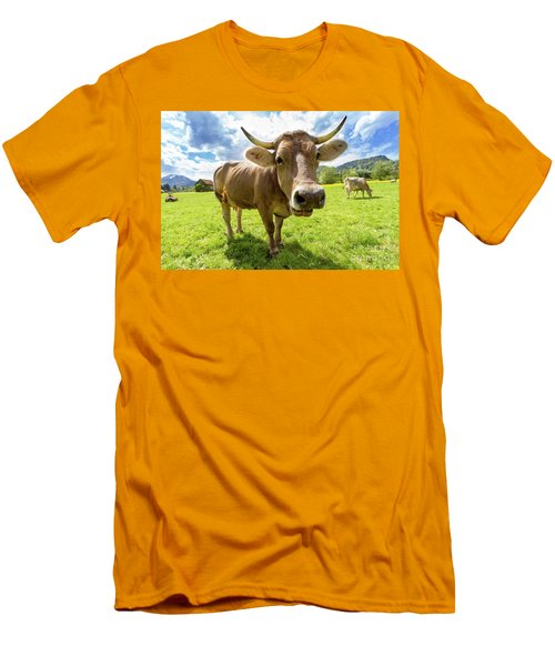 Men's T-Shirt (Slim Fit) featuring the photograph Cow In Meadow by MGL Meiklejohn Graphics Licensing