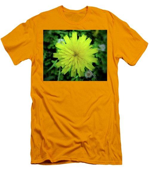 Dandelion Symmetry Men's T-Shirt (Athletic Fit)
