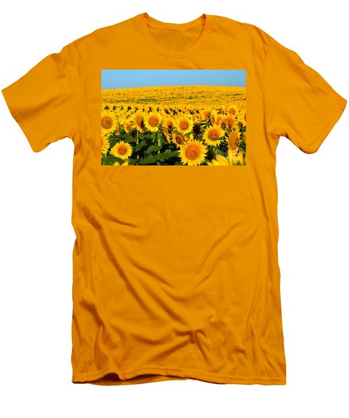 Endless Sunflowers Men's T-Shirt (Slim Fit) by Catherine Sherman