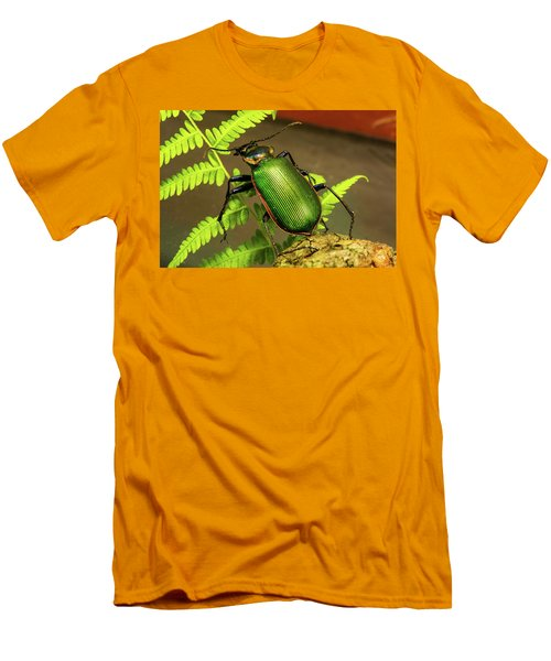 Fiery Hunter Carabid Men's T-Shirt (Athletic Fit)