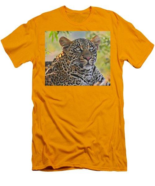 Gazing Leopard Men's T-Shirt (Athletic Fit)