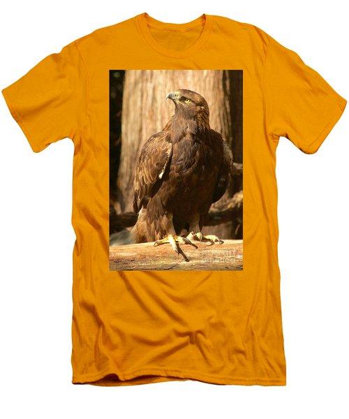 Golden Eagle Men's T-Shirt (Slim Fit) by Sean Griffin